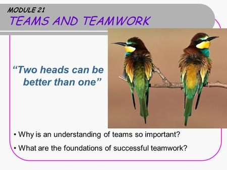 "MODULE 21 TEAMS AND TEAMWORK ""Two heads can be better than one"" Why is an understanding of teams so important? What are the foundations of successful teamwork?"