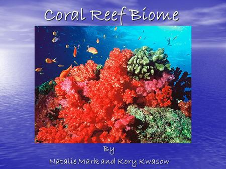 Coral Reef Biome By Natalie Mark and Kory Kwasow.