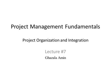 Project Management Fundamentals Project Organization and Integration