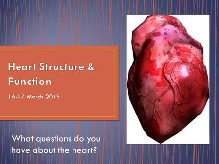 16-17 March 2015 What questions do you have about the heart?