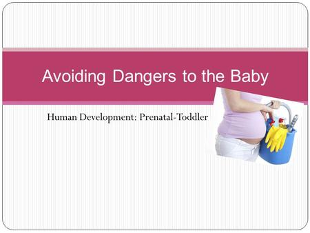 Human Development: Prenatal-Toddler Avoiding Dangers to the Baby.