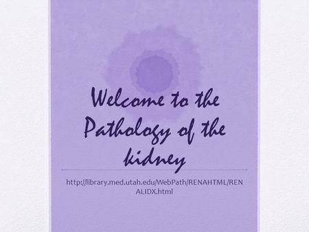 Welcome to the Pathology of the kidney  ALIDX.html.