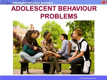 Adolescent behaviour problems © 2014 wheresjenny.com ADOLESCENT BEHAVIOUR PROBLEMS.