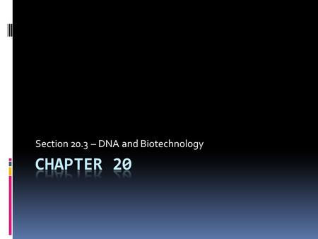 Section 20.3 – DNA and Biotechnology. DNA and Biotechnology  Carpenters require tools such as hammers, screwdrivers, and saws, and surgeons require scalpels,