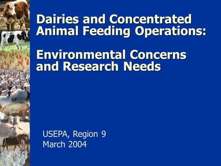 Dairies and Concentrated Animal Feeding Operations: Environmental Concerns and Research Needs USEPA, Region 9 March 2004.