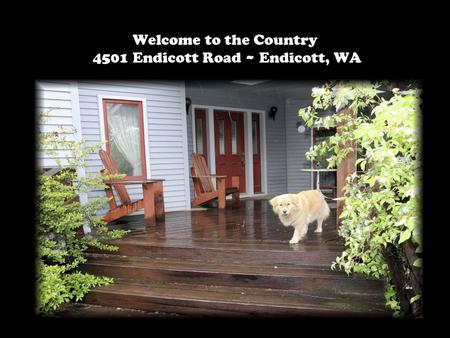Welcome to the Country 4501 Endicott Road ~ Endicott, WA.