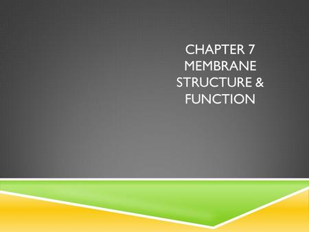 CHAPTER 7 MEMBRANE STRUCTURE & FUNCTION. I Can's  Explain why membranes are selectively permeable  Describe the roles of phospholipids, proteins, &