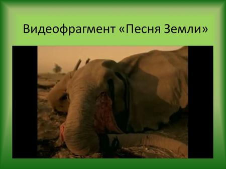 Видеофрагмент «Песня Земли». Тема урока What Can You Do to Save the Earth?