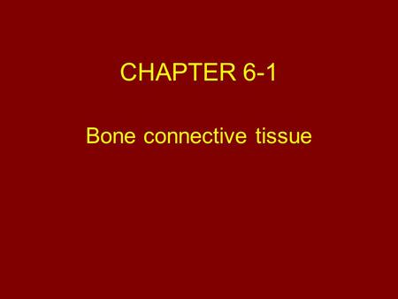 "CHAPTER 6-1 Bone connective tissue. ""Objectives "" 1.Functions of the skeletal system 2.Classification of bones based on shape 3.General features of bone."