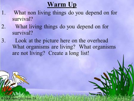 © 2004 Plano ISD, Plano, TX Warm Up 1. What non living things do you depend on for survival? 2. What living things do you depend on for survival? 3. Look.