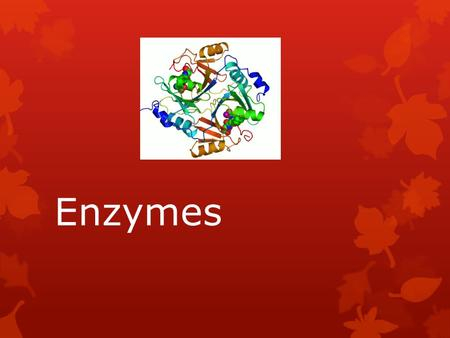 Enzymes. What are enzymes?  Chemically, enzymes are proteins.  They act as catalysts in chemical reactions.  The substances on which enzymes act are.