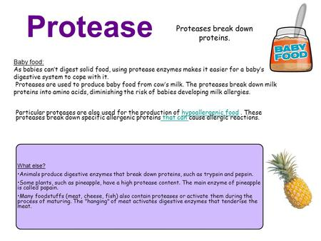 Protease Proteases break down proteins. Baby food: As babies can't digest solid food, using protease enzymes makes it easier for a baby's digestive system.