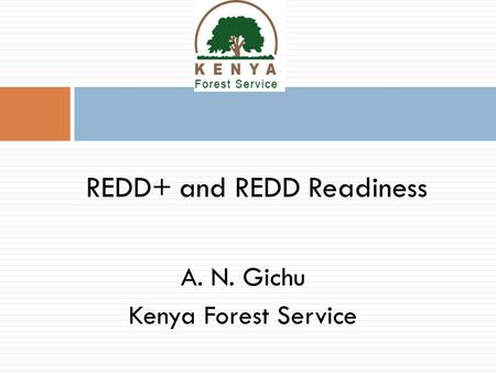 A. N. Gichu Kenya Forest Service REDD+ and REDD Readiness.