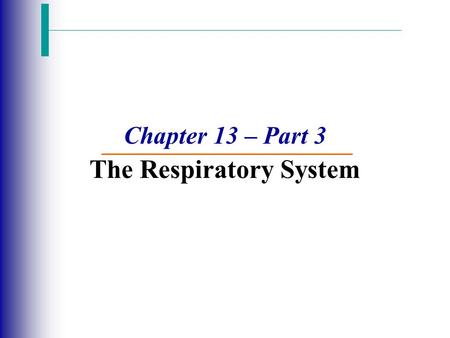 Chapter 13 – Part 3 The Respiratory System. Lung Cancer  Accounts for 1/3 of all cancer deaths  Most types are tremendously aggressive and metastasize.