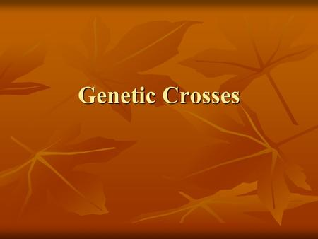 "Genetic Crosses. Genetics ""study of genes and heredity"" ""study of genes and heredity"" Gene – segment of DNA that codes for a Gene – segment of DNA that."