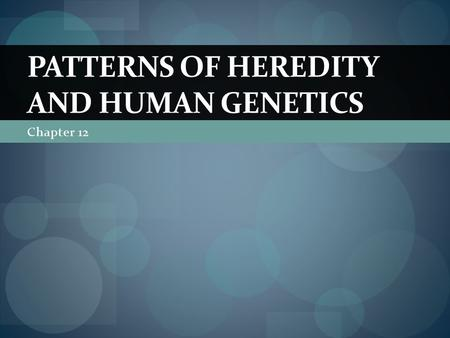 Chapter 12 PATTERNS OF HEREDITY AND HUMAN GENETICS.