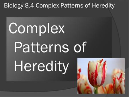 Biology 8.4 Complex Patterns of Heredity