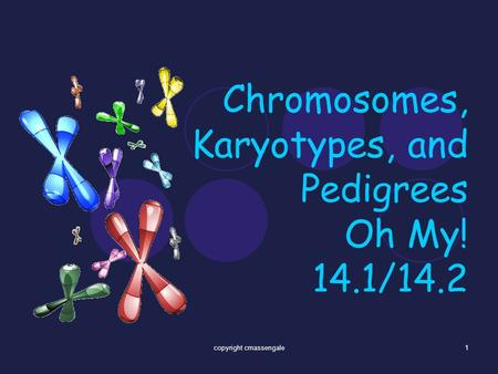 Chromosomes, Karyotypes, and Pedigrees Oh My! 14.1/14.2 1copyright cmassengale.