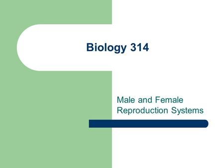 Biology 314 Male and Female Reproduction Systems.
