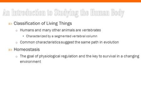  Classification of Living Things o Humans <strong>and</strong> many other animals are vertebrates Characterized by a segmented vertebral column o Common characteristics.