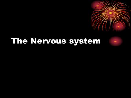 The Nervous system. Do Now Put together the puzzle without talking, making eye contact, or using hand gestures. Did you find this difficult? What would.