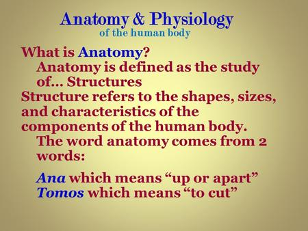 Anatomy & Physiology What is Anatomy?