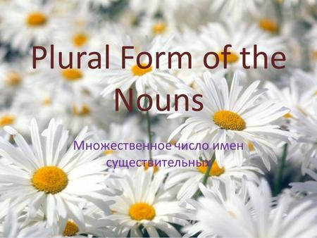 Plural Form of the Nouns Множественное число имен существительных.