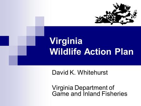 Virginia Wildlife Action Plan David K. Whitehurst Virginia Department of Game and Inland Fisheries.
