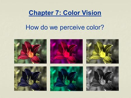 Chapter 7: Color Vision How do we perceive color?.