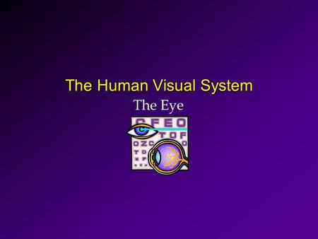 The Human Visual System The Eye. Anatomy of the Human Eye Cornea Pupil Iris Sclera Retina Optic Nerve Lens.