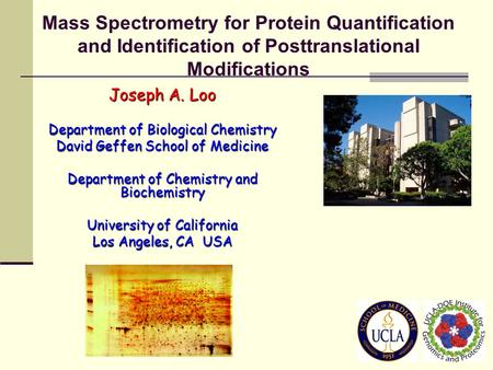 Mass Spectrometry for Protein Quantification and Identification of Posttranslational Modifications Joseph A. Loo Department of Biological Chemistry David.
