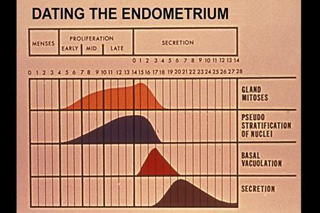 dating-of-endometrium-ppt-hard-nipples-pics-free