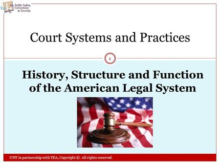 History, Structure and Function of the American Legal System