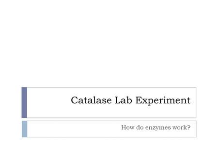 Catalase Lab Experiment How do enzymes work?. Pre-Lab Questions  What is an enzyme? What is a catalyst?  Enzyme - a protein that breaks down or creates.