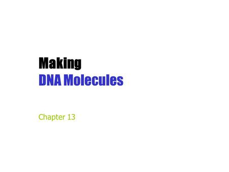 Making DNA Molecules Chapter 13.
