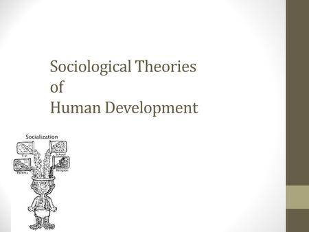 sociological theories and community development Social theory refers to the use of abstract and often complex theoretical frameworks to describe, explain, and analyze the social world sociological subjects related to understanding society and its development became part of social theory.