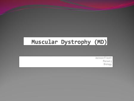 Jackson Friesth Period 5 Biology. The Origin of Muscular Dystrophy Muscular dystrophy is a recessive gene, that if passed down will cripple vital muscle.