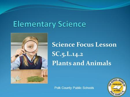 Science Focus Lesson SC.5.L.14.2 Plants and Animals