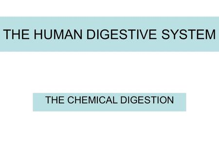 THE HUMAN DIGESTIVE SYSTEM THE CHEMICAL DIGESTION.