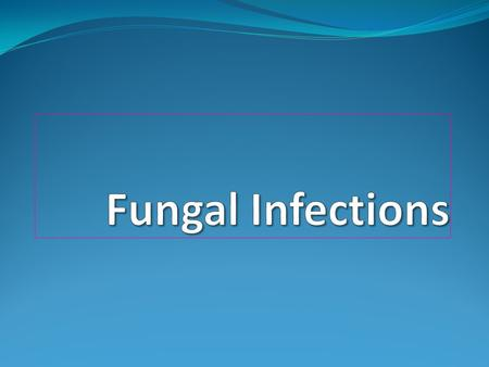 Fungal Infections Who is at Risk Seriously ill patients being treated with Corticosteroids Antineoplastic drugs Immunosuppressive drugs Patients with.