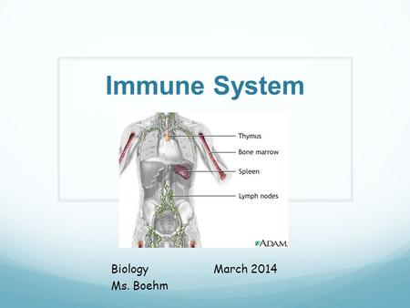 Immune System BiologyMarch 2014 Ms. Boehm. What is the Immune System? The body's defense system, which fights off pathogens that cause disease- it keeps.