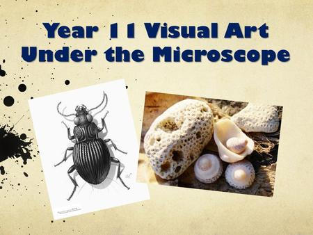 Year 11 Visual Art Under the Microscope. Term One Year 11 – Diversification Unit 1 – Natural Form – Under the Microscope Assessment: Visual Art Diary.