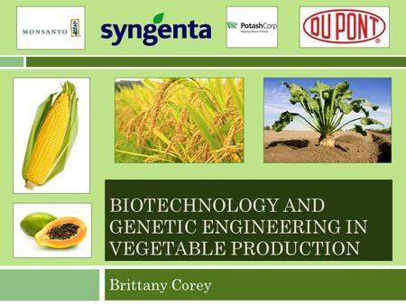 BIOTECHNOLOGY AND GENETIC ENGINEERING IN VEGETABLE PRODUCTION Brittany Corey.