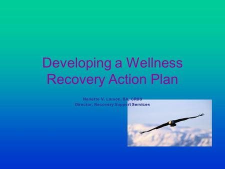Developing a Wellness Recovery Action Plan Nanette V. Larson, BA, CRSS Director, Recovery Support Services.