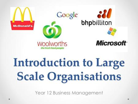 Introduction to Large Scale Organisations