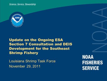 1 Update on the Ongoing ESA Section 7 Consultation and DEIS Development for the Southeast Shrimp Fishery Louisiana Shrimp Task Force November 29, 2011.