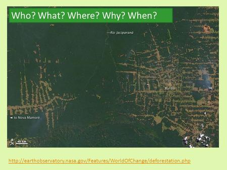 Who? What? Where? Why? When? http://earthobservatory.nasa.gov/Features/WorldOfChange/deforestation.php.