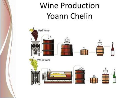 Wine Production Yoann Chelin. Wine exportation in the world.