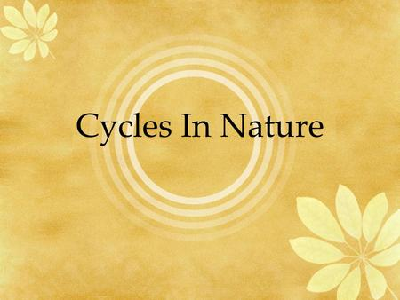 Cycles In Nature.