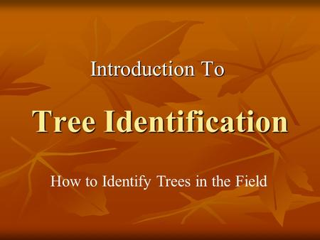 Tree Identification Introduction To How to Identify Trees in the Field.